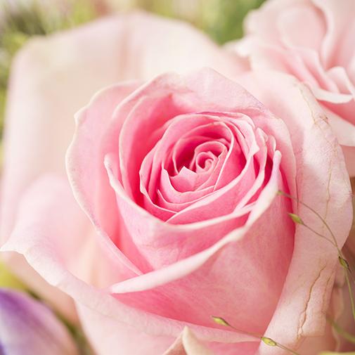 Composition florale Santorin