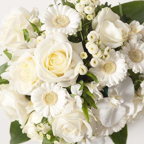 Composition florale Adonis
