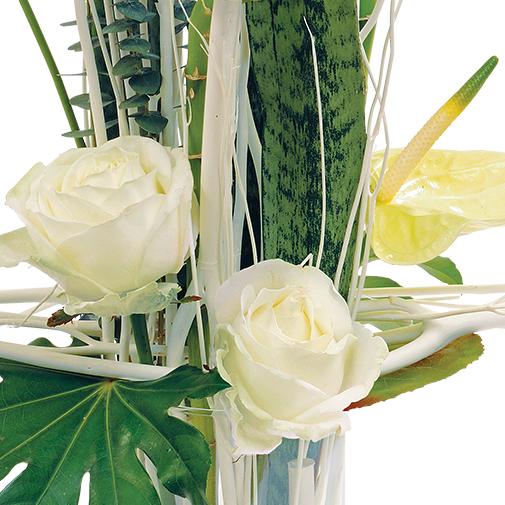 Composition florale Anis