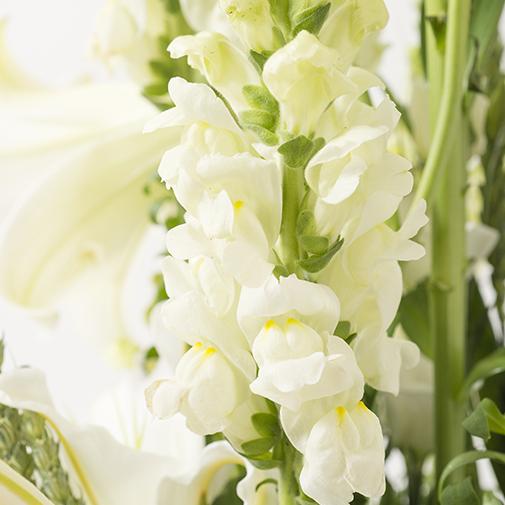 Composition florale Athéna
