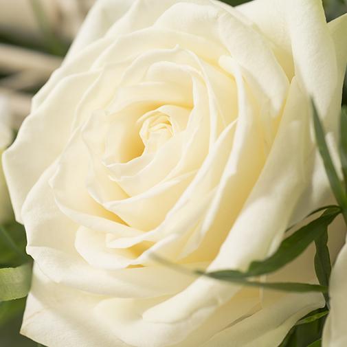 Composition florale Songe