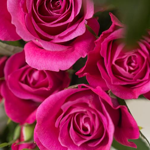 Bouquet de fleurs Déclic et son écrin d'amandes gourmandes