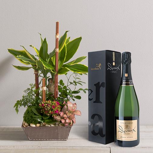 Fleurs et cadeaux Mikado et son champagne Devaux Interflora