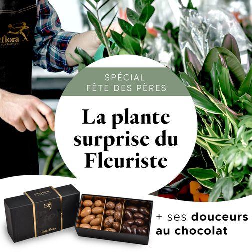 """Plantes vertes et fleuries La plante gourmande du fleuriste """"Spécial Fête des pères"""""""