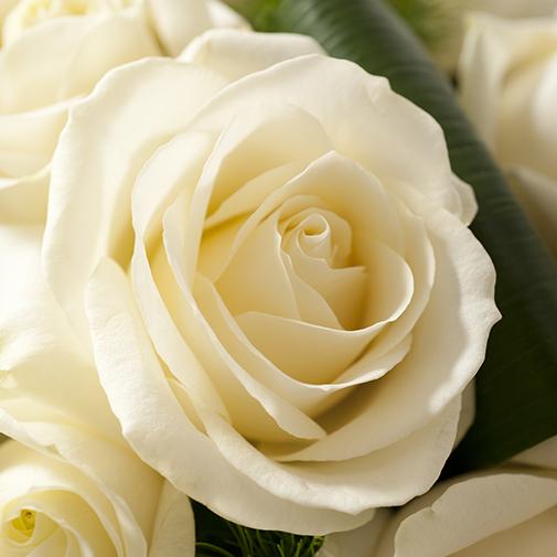 Fleurs deuil Olympie