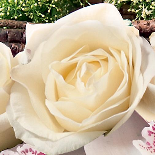 Fleurs deuil Requiem
