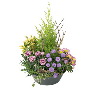 Fleurs deuil Bosquet Toussaint