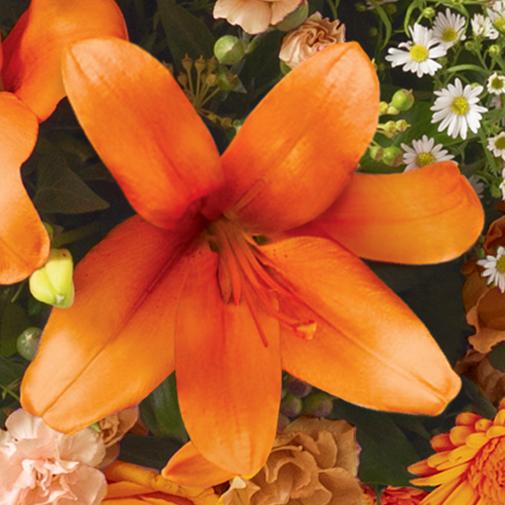 Fleurs deuil Hommage orange