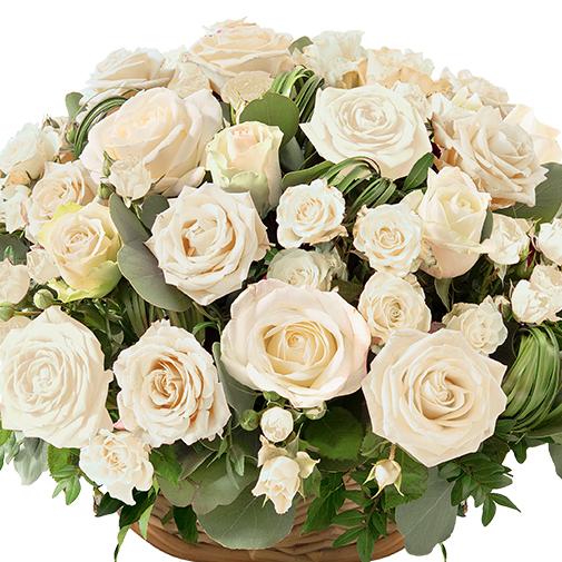 Fleurs deuil Rosae blanc