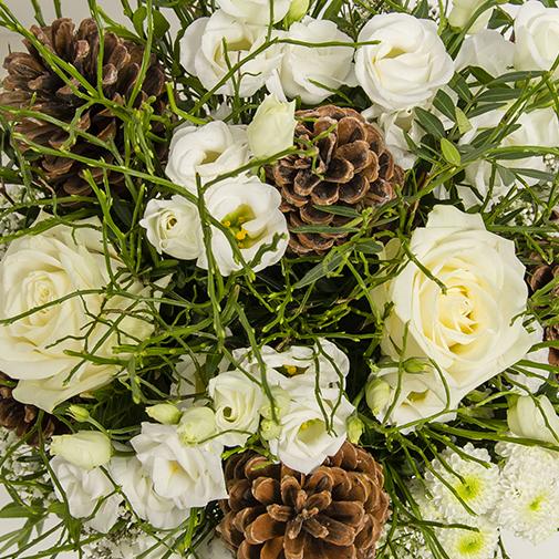 Fleurs et cadeaux Etoile des neiges et sa bougie parfumée offerte