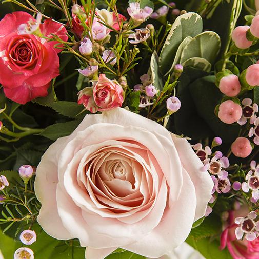 Fleurs et cadeaux My valentine et son champagne Devaux Interflora