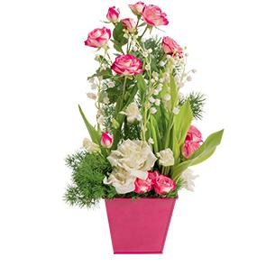 Fleurs livraison de bouquets de fleurs domicile for Muguet livraison domicile