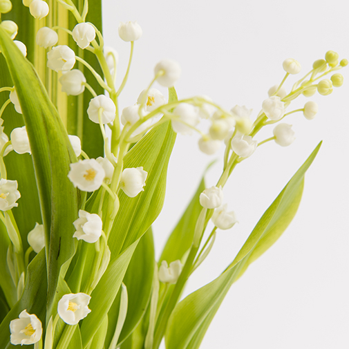 Composition florale Gri-Gri