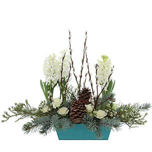 Composition florale Sous le sapin Noël