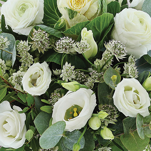 Fleurs et cadeaux Etoile des neiges et sa bougie parfumée