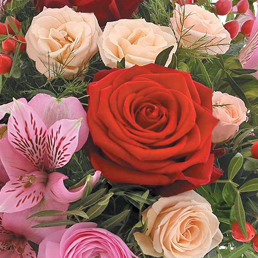 Bouquet de fleurs My valentine et son champagne Devaux