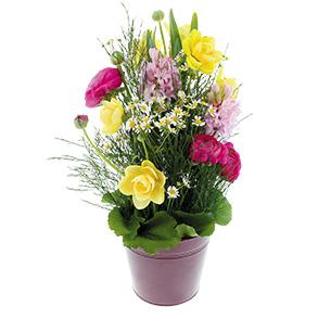 Bouquet de fleurs Gourmandise Fleur jaune