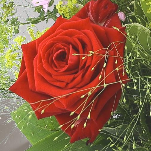 Bouquet de fleurs Tendre bisou et sa bougie parfumée