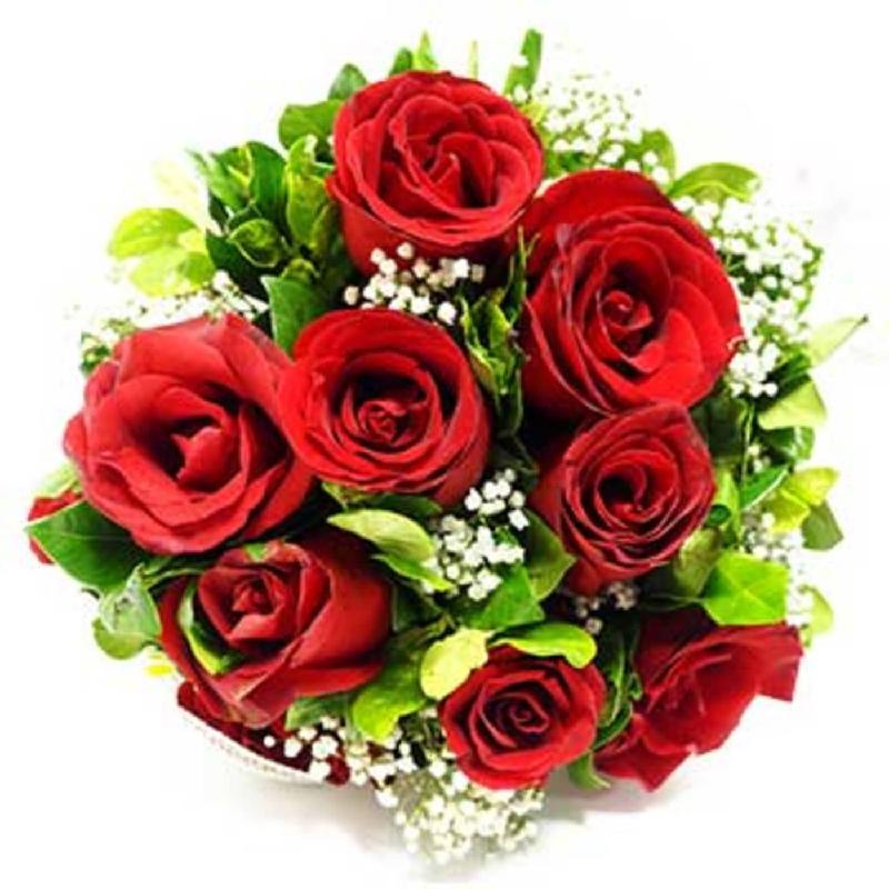 Bouquet de fleurs 12 red roses with filler