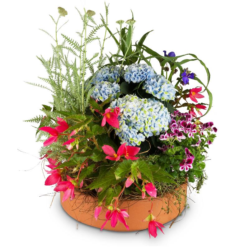 Bouquet de fleurs Garden Magic