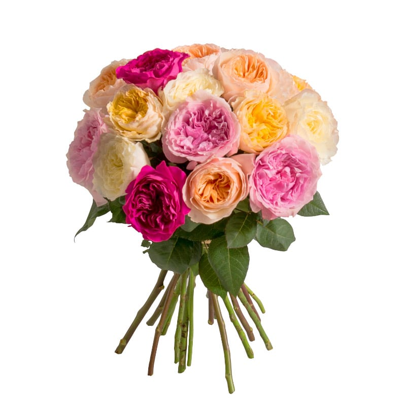 Brass e parfum e de roses anglaises interflora for Fleuriste livreur