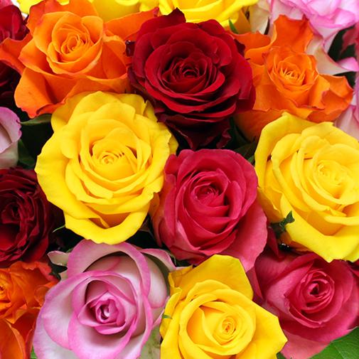 Fleurs et cadeaux Brassée de 20 roses multicolores et son écrin géant FAUCHON