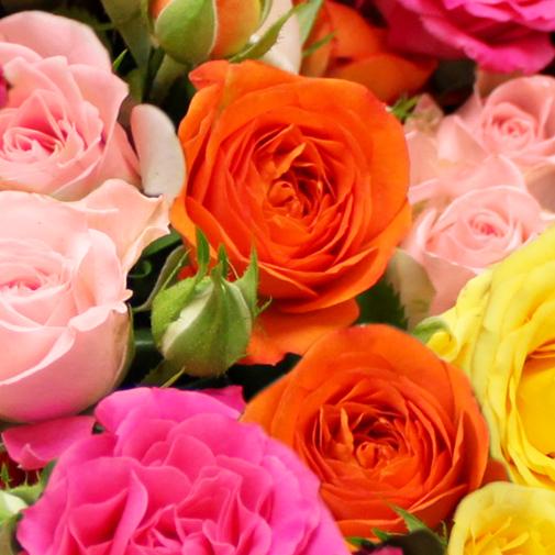 Fleurs et cadeaux Brassée de tendresse