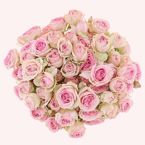 Fleurs et cadeaux Saint valentin pétillante