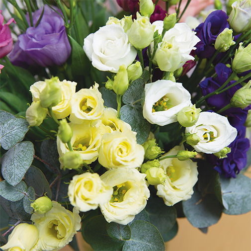 Bouquet de fleurs Bouquet de lisianthus