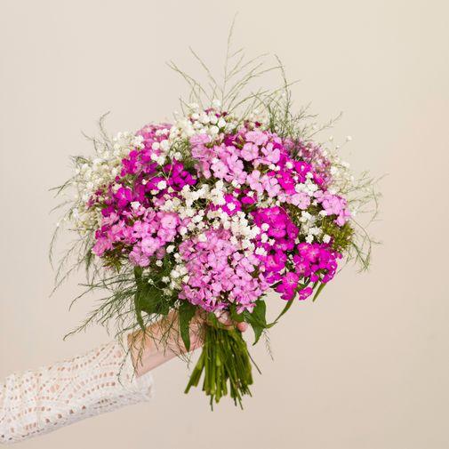 Bouquet de fleurs Brassée d'Oeillets de poète et Gypsophile