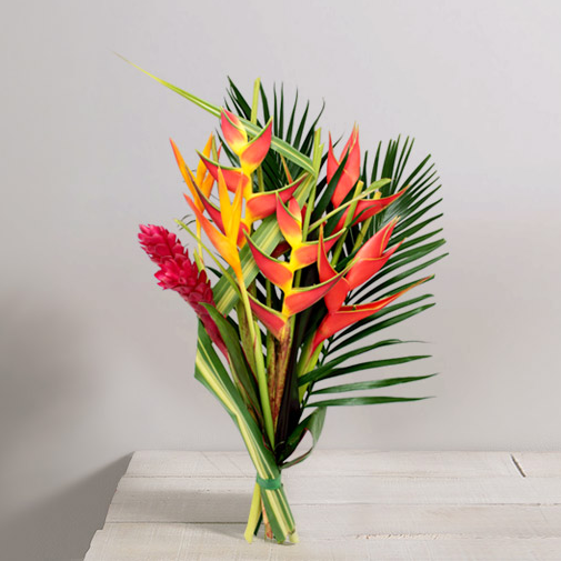 Exotique rapidit remise en main propre en de 4h for Fleuriste livreur