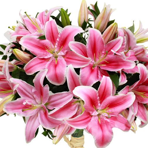 Fleurs et cadeaux Brassée de lys