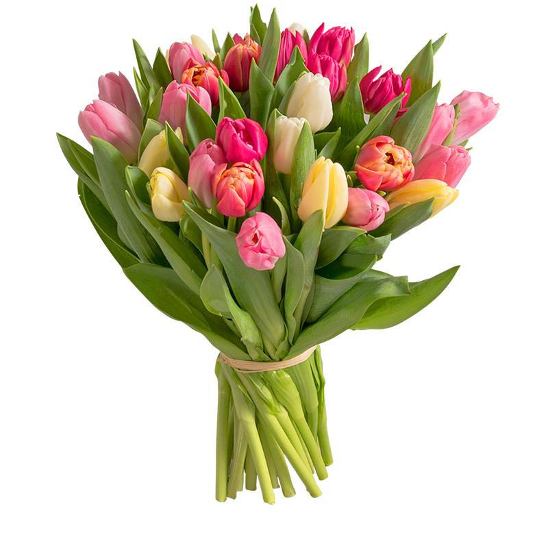 Brass e de 30 tulipes collection f te des grands m res for Livraison tulipes
