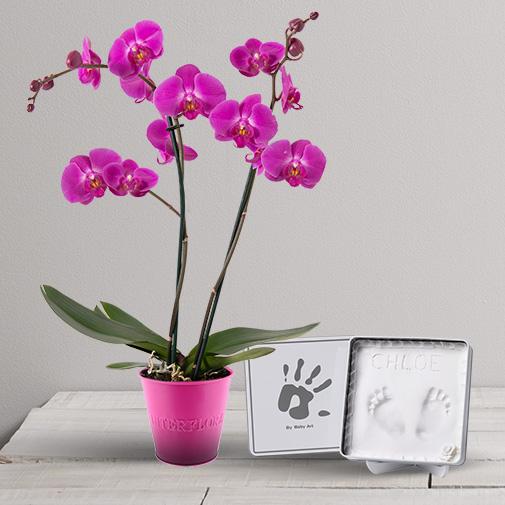 Fleurs et cadeaux Bébé artiste Baby Art