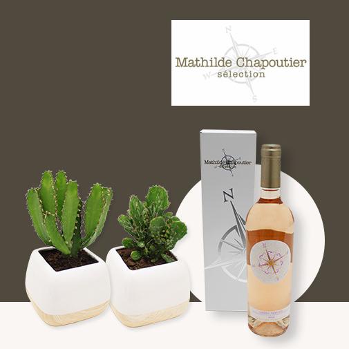 Fleurs et cadeaux Cactus et son rosé Mathilde Chapoutier