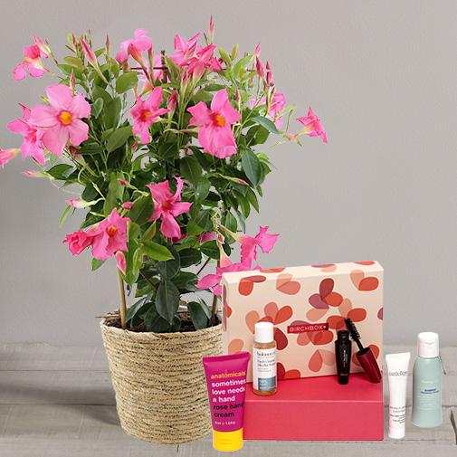 Interflora Birchbox