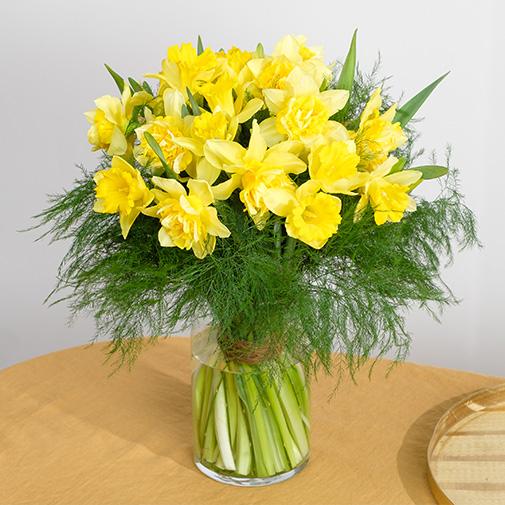 Bouquet de fleurs Brassée de jonquilles et ses chocolats
