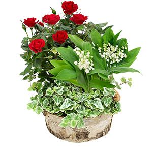 Bouquet de fleurs Jardin de muguet