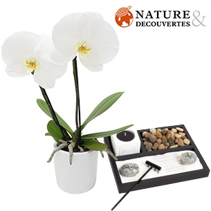 Orchidee Hanoi et son jardin zen Nature & Decouvertes - interflora