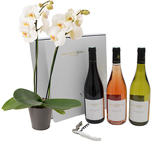 Orchidee et son coffret Mathilde Chapoutier - interflora