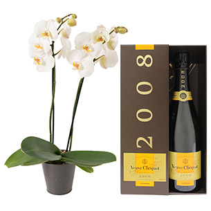 Fleurs et cadeaux Bulle de joie Veuve Clicquot Félicitations