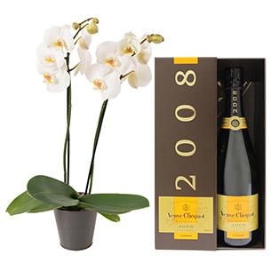 Fleurs et cadeaux Bulle de joie Veuve Clicquot Naissance maman