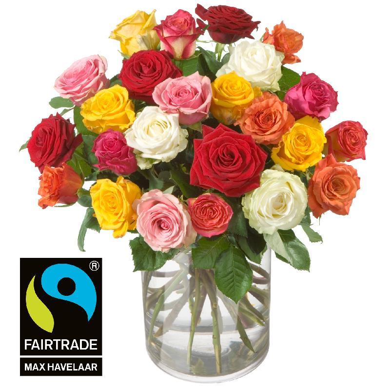 24 Mixed Fairtrade Max Havelaar-Roses