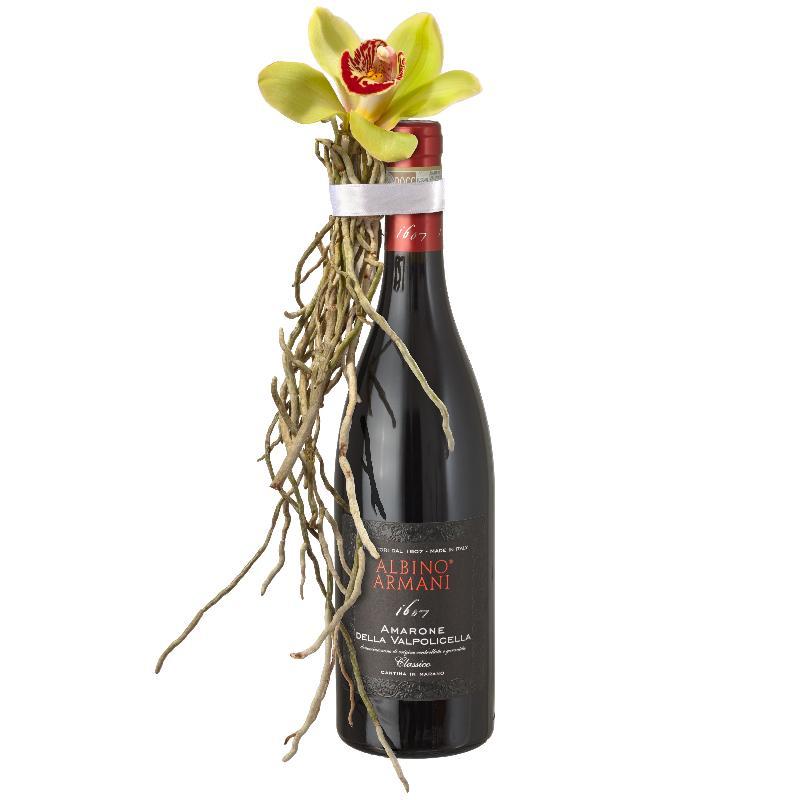 A Charming Genie in a Bottle:  Amarone Albino Armani  DOCG (