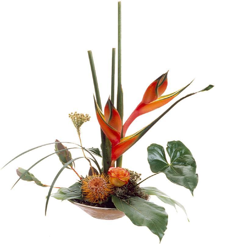 Bouquet de fleurs Exotic
