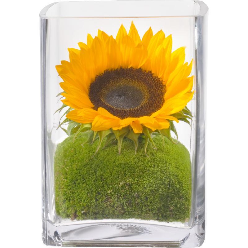 Bouquet de fleurs Here comes the Sun! (including Vase)