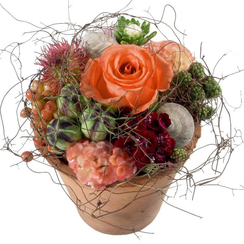 Bouquet de fleurs Flower Kiss