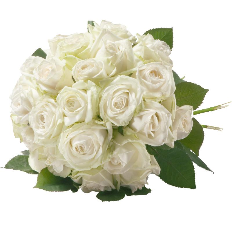 Bouquet de fleurs Pearl of Roses in White