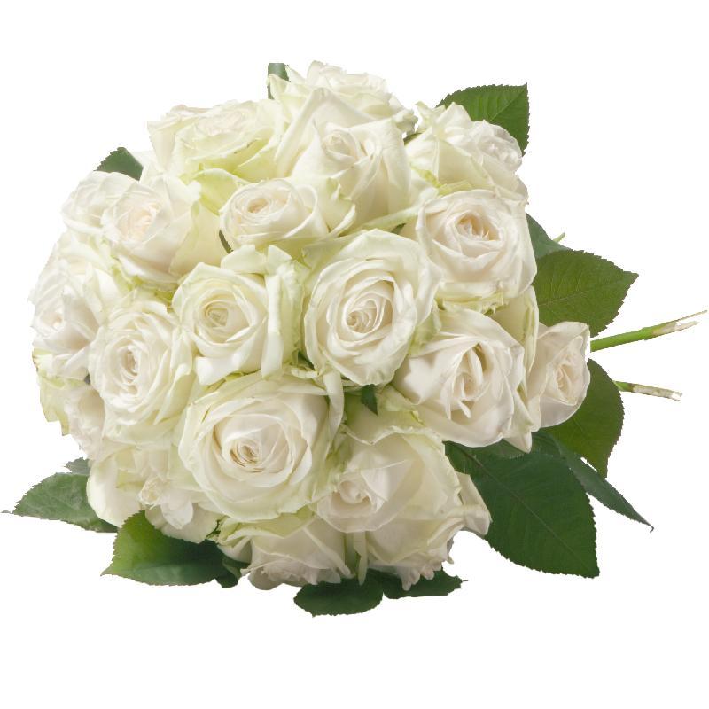 Bouquet de fleurs Pearl of Roses in White