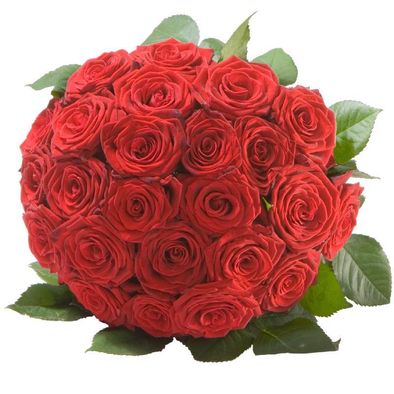 Bouquet de fleurs Pearl of Roses in Red